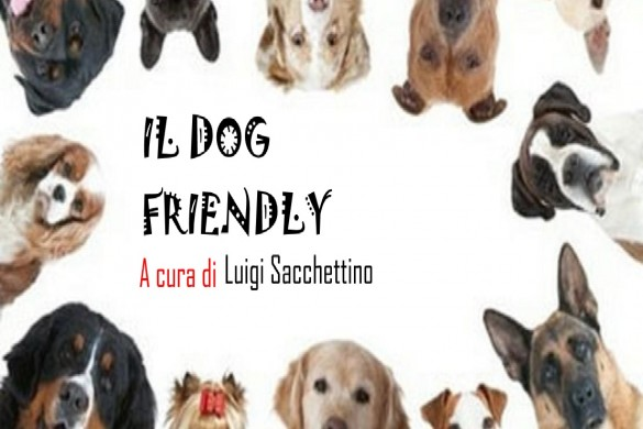 cane dog friendly aree cani terremoti